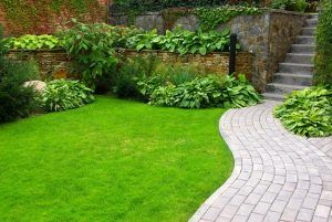Gardening Services in Essex